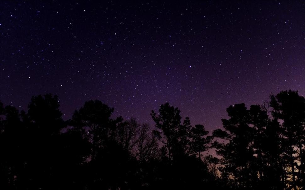 El Campo de Estrellas