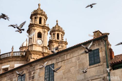 Tour privado Pontevedra
